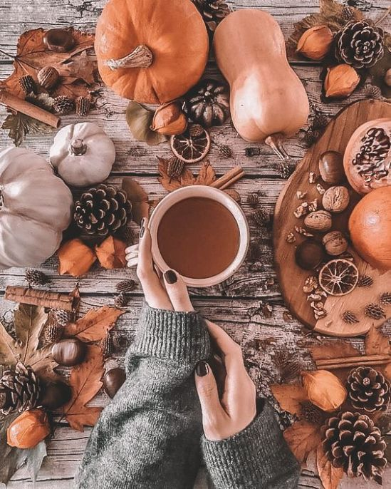 Socially Distanced Fall Activities