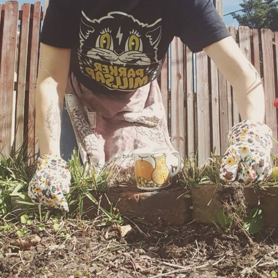 10 Easy Organic Gardening Tips That Will Keep Your Garden Hardy