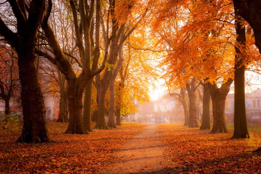 Here's The Places To Go For Fall Break In Case You're Already Thinking About It
