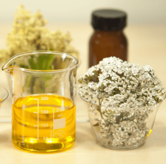 10 Must Try Facial Oils To Incorporate Into Your Skincare Routine