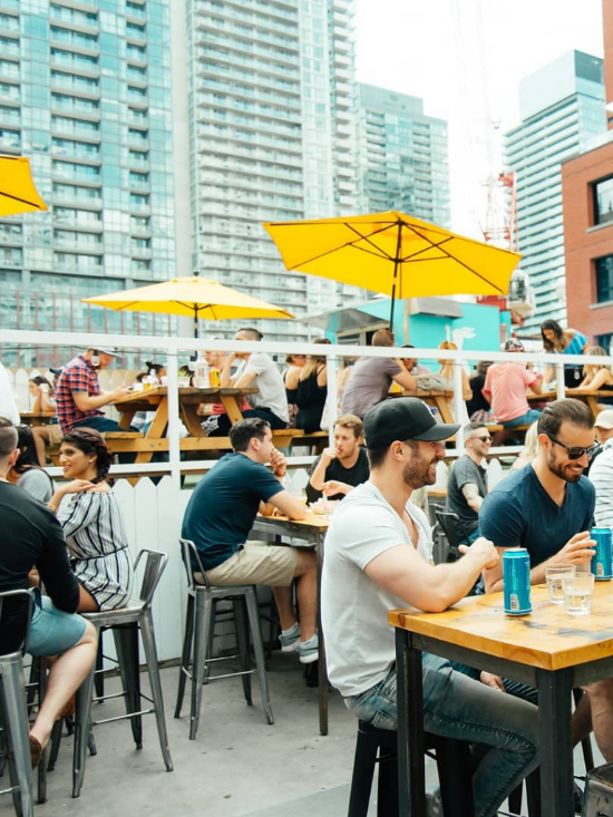 Best Rooftop Bars In Toronto You Have To Check Out