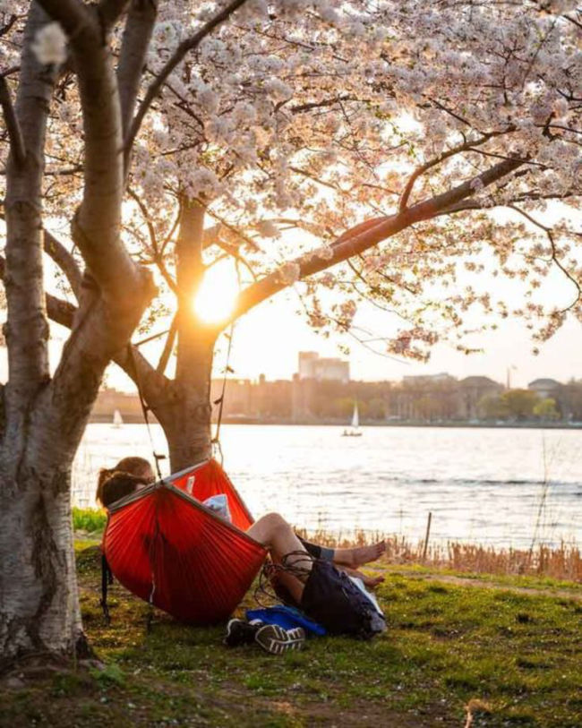 5 Spots To Soak Up The Sun Around Boston