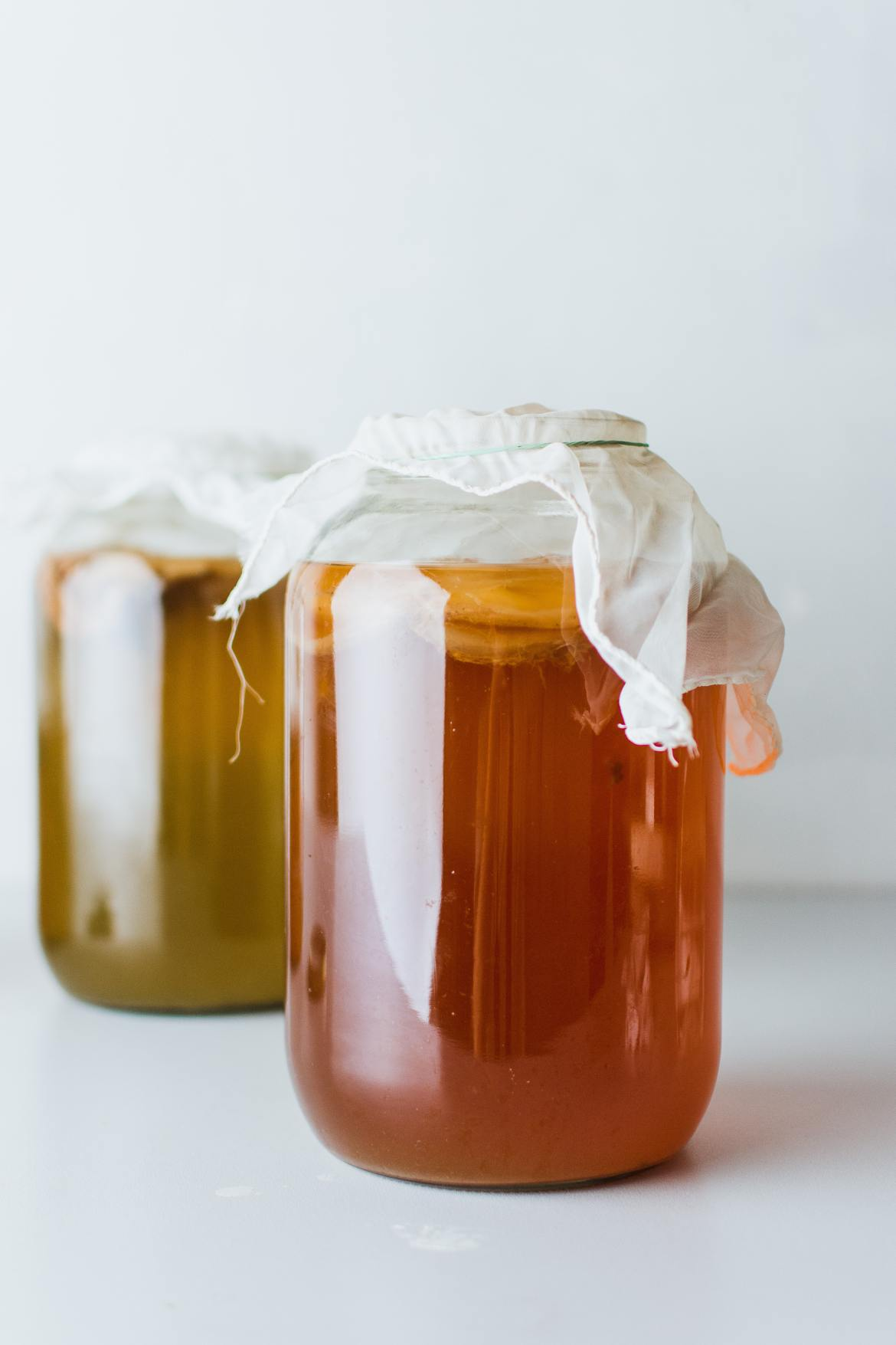 Lining the aisle in your local health food stores and farmers' markets, is none other than the fermented tea known as Kombucha. It is well-loved by celebrities and health nuts alike, but why?