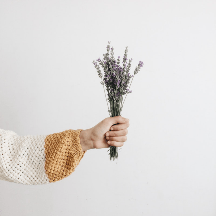 The Best Essential Oils For All Aspects Of Your Life