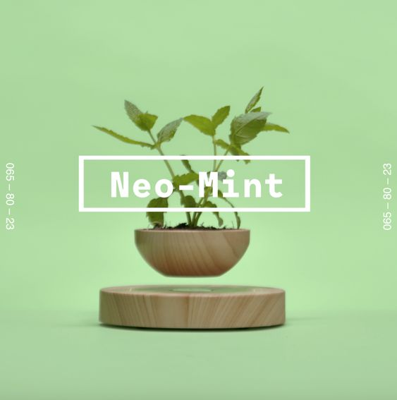 neo mint visualization