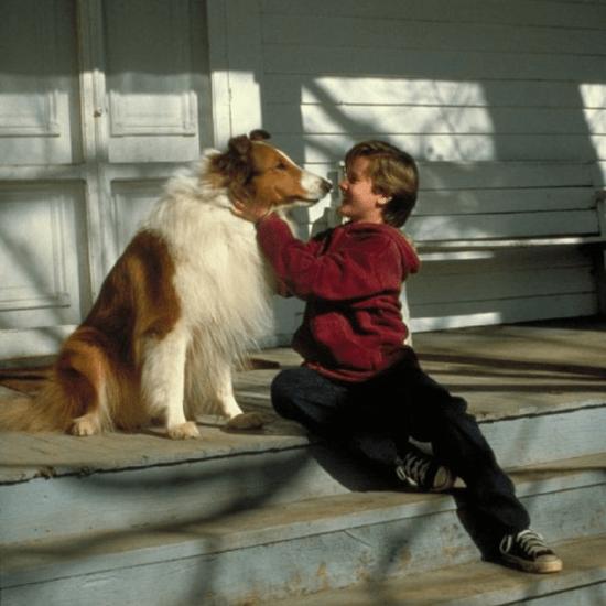 Lassie (1994) movie still