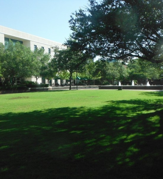 Best Studies Spots On Campus At College Of Charleston