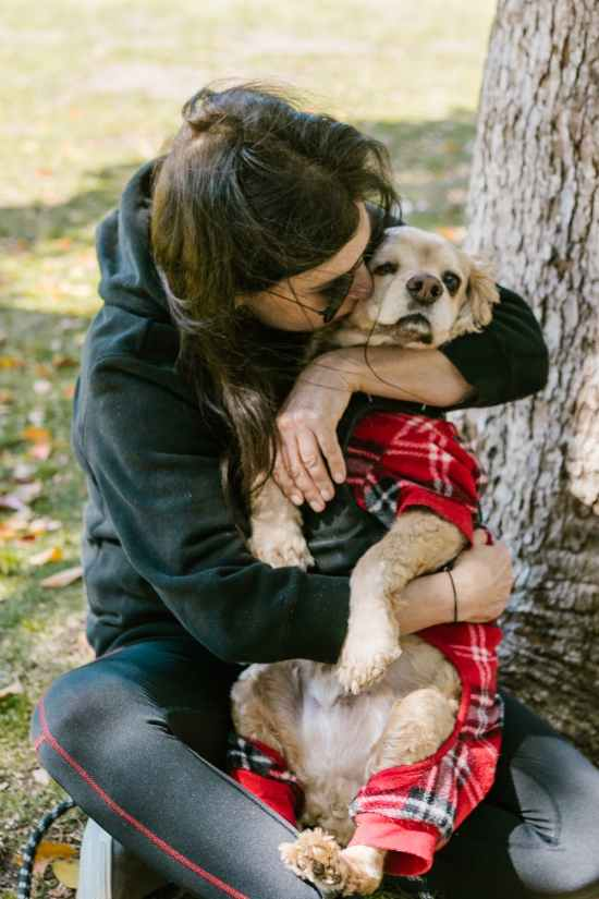 Delicious and Healthy Foods You Can Give Your Pets