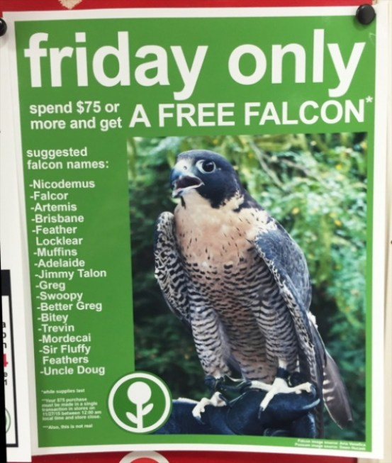 The Funniest Black Friday Ads We've Seen Over The Years