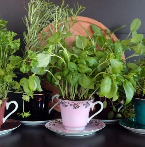 10 small gardening ideas to brighten up your yard