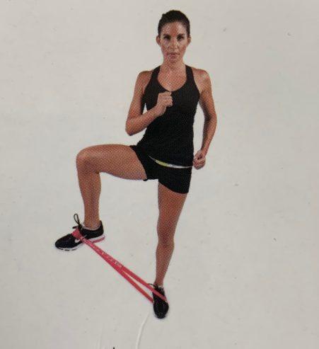 go fit power loop training manual