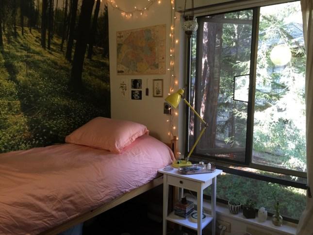UC Santa Cruz has some amazingly decorated dorm rooms!