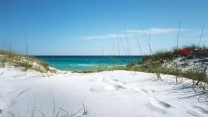 Best wallpaper database with florida, images, wallpaper, beaches, dunes, pictures, grayton, scenic, desktop, beach