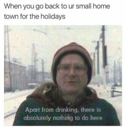 16-when-you-go-back-to-your-small-town-for-the-holidays-funny-meme 2