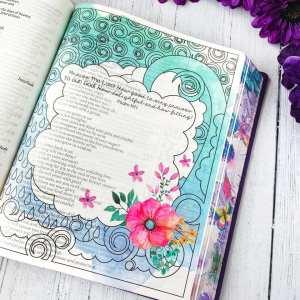 inspire bible large print