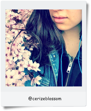 My blogging rituals by @cerizeblossom