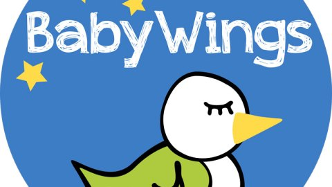 UK blogging assignment: Baby Wings – Product Reviews. Closes 12th July 2018