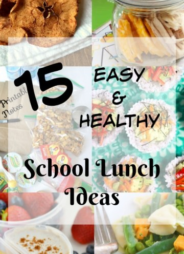 15 Easy and Healthy School Lunch Ideas