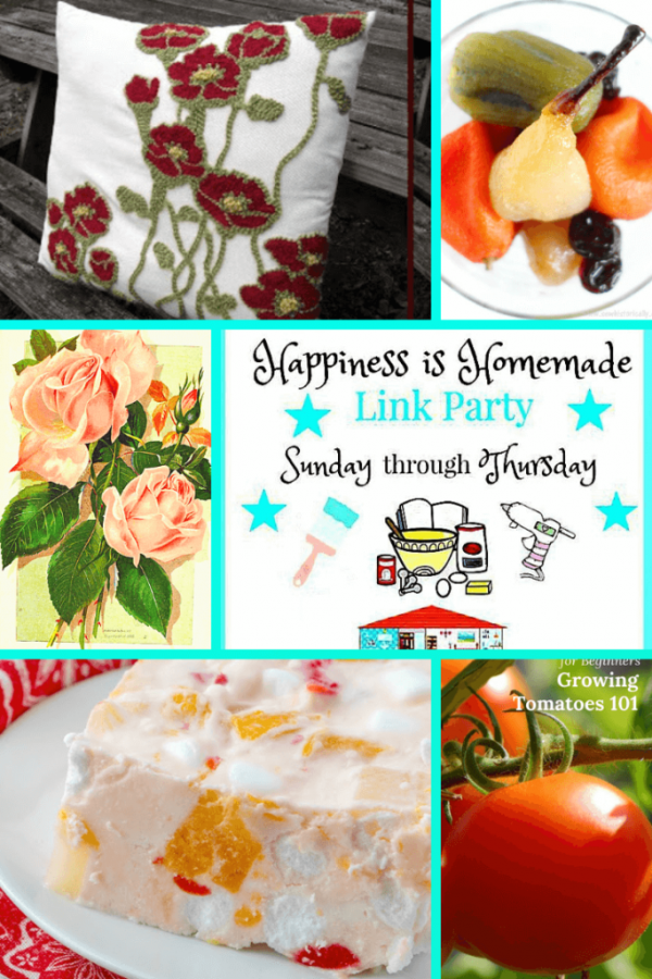 It's time for Happiness is Homemade Link Party and we're so glad you're joining us! We've got the best recipes, DIY projects, crafts, home decor ideas, and so much more. Let's get on with the party with this month's hostess, Audrey.