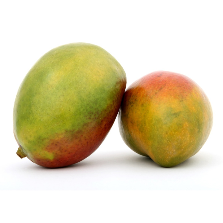 two mangoes side by side