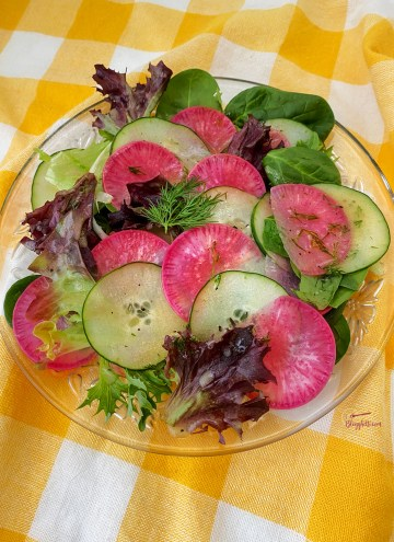 Cucumber, Purple Daikon Radish with spring greens salad with homemade dill dressing