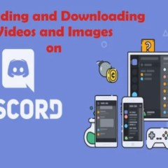 How to Download Videos and Images from Discord Using Phone and PC