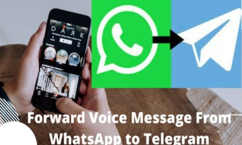 How to Forward WhatsApp Audio Messages to Telegram Easily