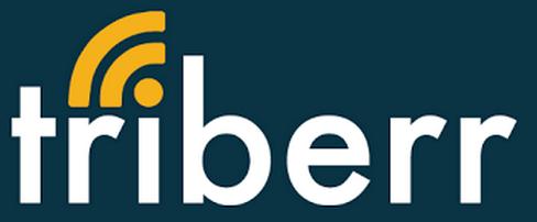 Triberr InfoBunny Logo