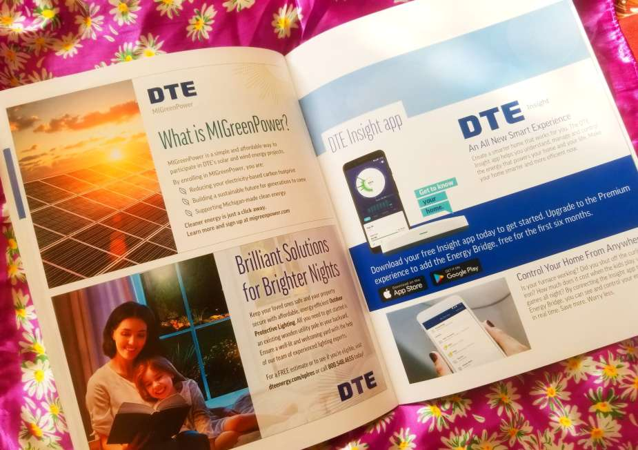 DTE Home Energy Consultation