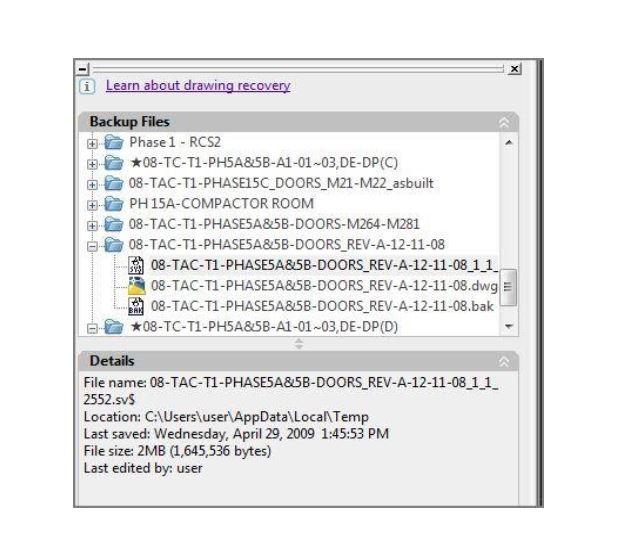 austocad file