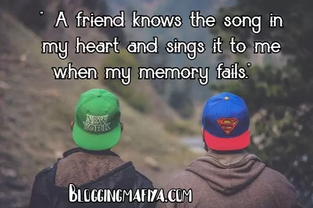 best friend quotes, quotes on friendship, quotes on friends, true friendship quotes, best friendship quotes, happy friendship day, friendship day quotes, happy friendship day images, friendship day images, motivational quotes in english, instagram bio for boys, life quotes in english, friendship day date, best friends forever, fake friends quotes, best friend birthday quotes, funny quotes on life, true friendship quotes