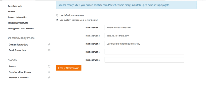 Cloudflare change in domain name