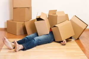 moving boxes - On The Move