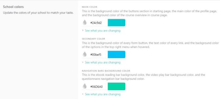 LearnWorlds school customization