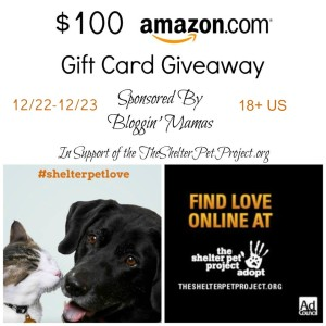 $100 Amazon Giftcard Giveaway spnosored by Bloggin' Mamas in support of Shelter Pets