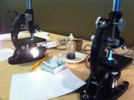 Physical Microscopes