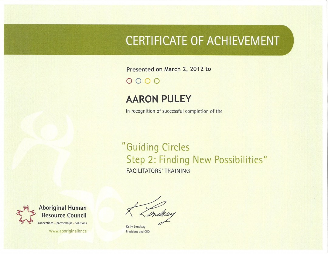 Guiding Circles Part II: Finding New Possibilities Certificate