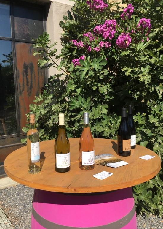 Cata de vinos en Domaine de Cantalauze