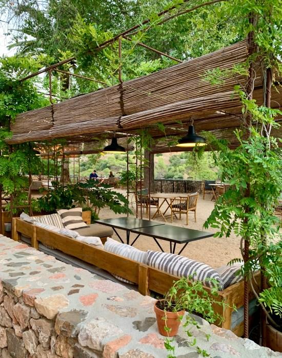 terraza con sofás y plantas