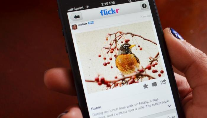Flickr Hashtag