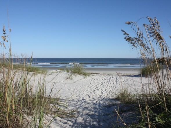 Palmetto Dunes Beach Access (2)