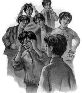 Siete Potter