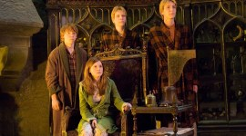 ¿Te has disfrazado alguna vez de Harry Potter?