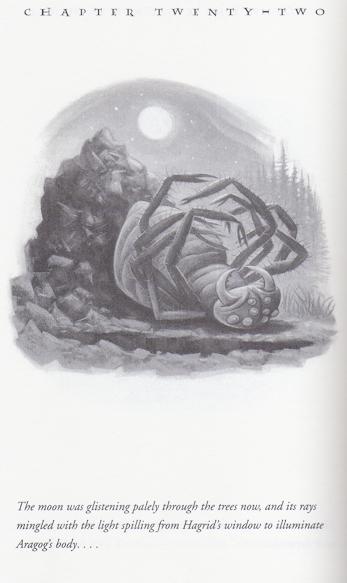 Serie de Harry Potter 154/199: «Después del entierro»