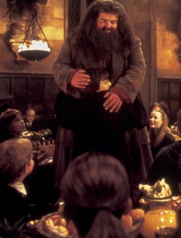 Potter en el Foco: 'Los Finales de las Películas de Harry Potter [Primera Parte]'