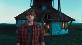 Si la Saga fuese de: Ron Weasley