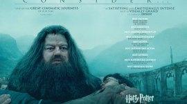 Banner Promocional de Nominaciones para 'Las Reliquias de la Muerte: Parte II'