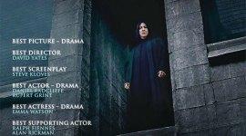 ¡Faltan 20 Días para Conocer las Nominaciones a los Premios Oscar 2012!