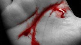Nuevo Fanfic Colaborativo en BlogHogwarts: «Harry Potter y la Deuda de Sangre»