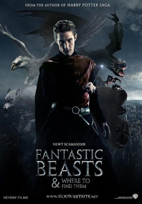 Harry Potter BlogHogwarts Animales Fantasticos y donde Encontrarlos Fanart 03